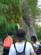 Plantas carnívoras en el Río Mundo
